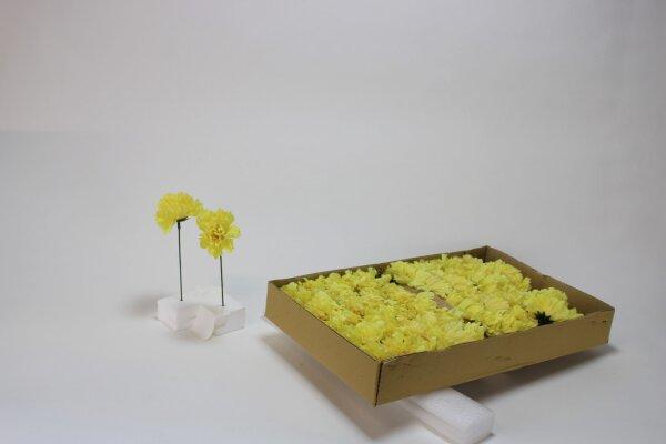 Nelke,gelb, 20 cm
